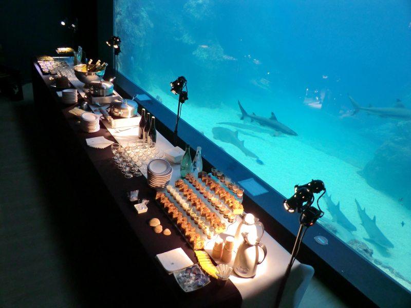salle aquarium de lyon seminairederniereminute. Black Bedroom Furniture Sets. Home Design Ideas
